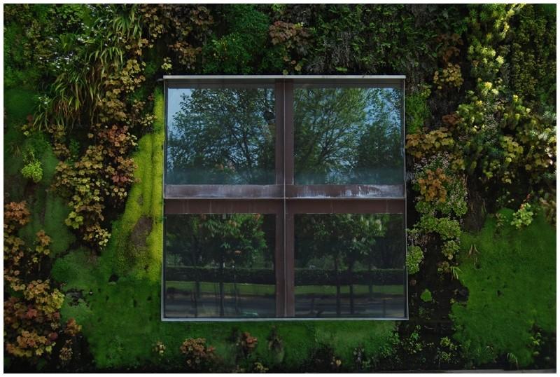 façade végétale branly paris quai