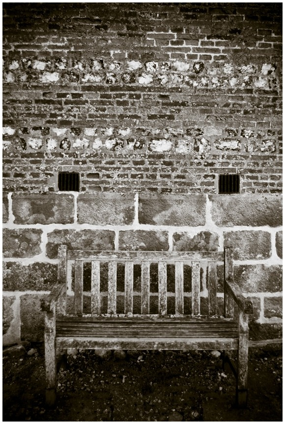 The old bench