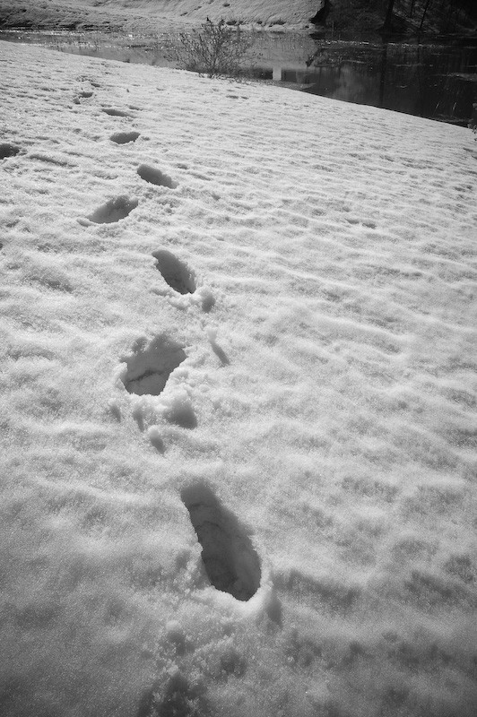 Infrared footsteps in the snow
