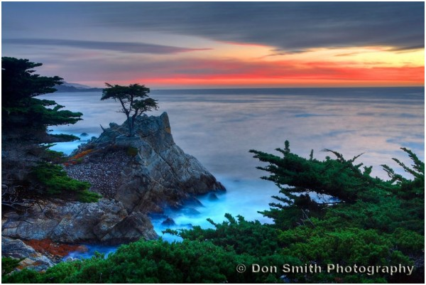 Sunset sky and Lone Cypress