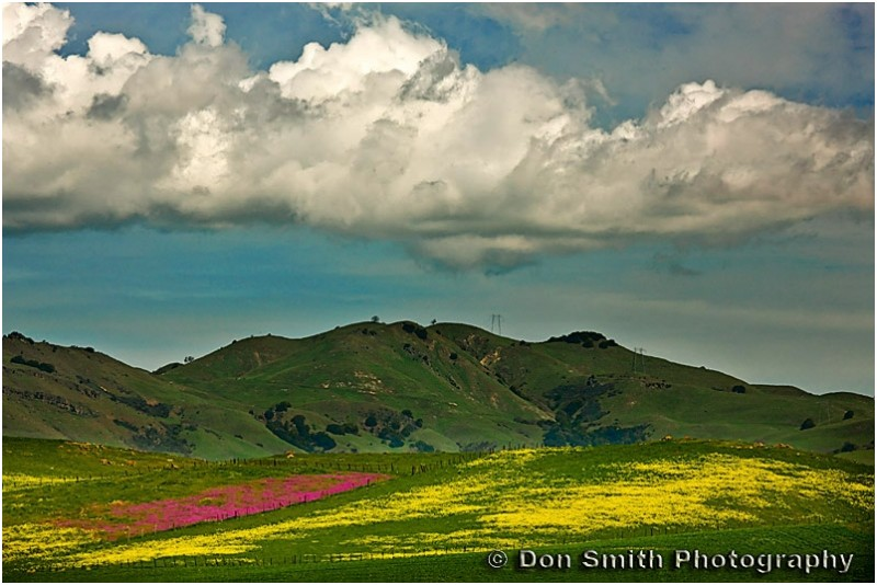 Spring hills in San Benito County