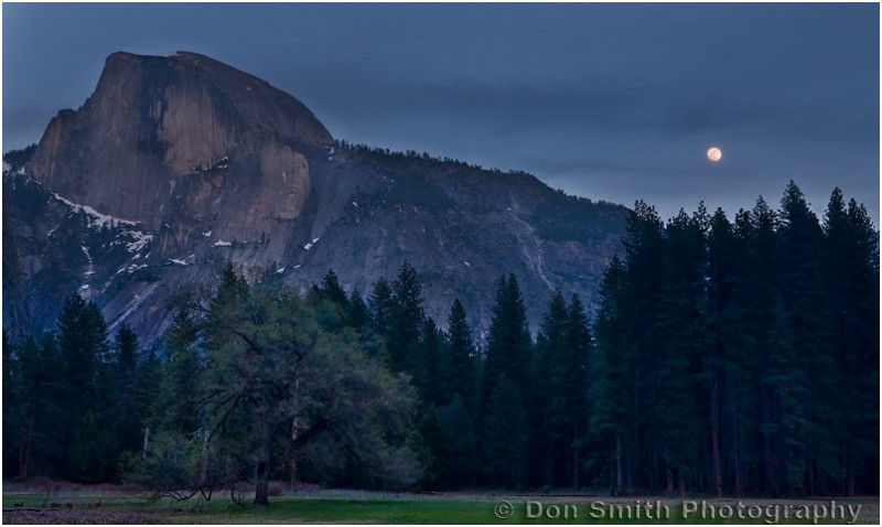A full moon rises over Yosemite's Cook's Meadow
