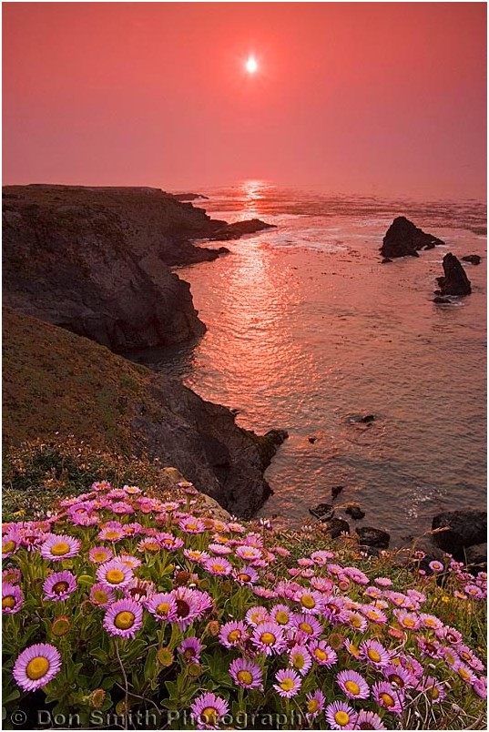 Sunset at Mendocino Headlands, California.