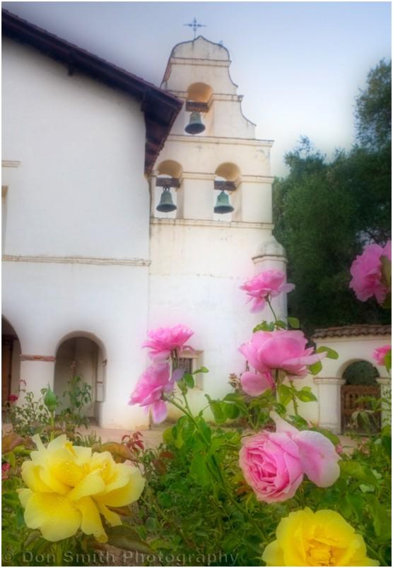 Roses and Mission San Juan Bautista