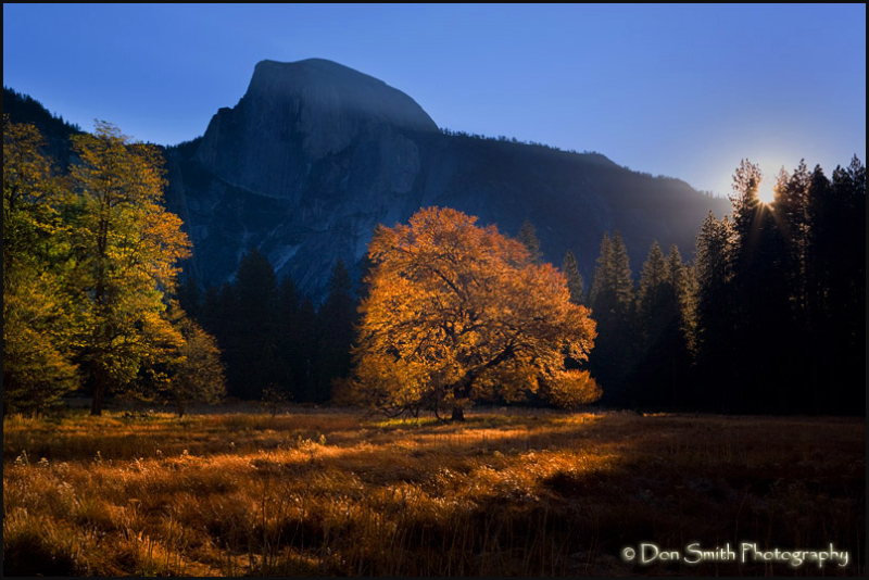 Sunrise at Cook's Meadow