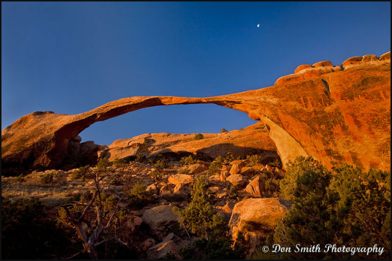 Landscape Arch at First Light