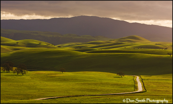 green rolling hills, country road, califoania,