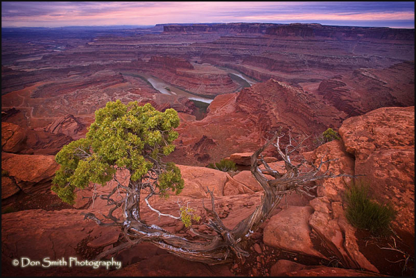 Dawn at Dead Horse Point