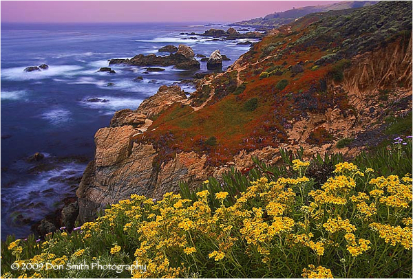 Summer's dawn, Garrapata State Park, Big Sur