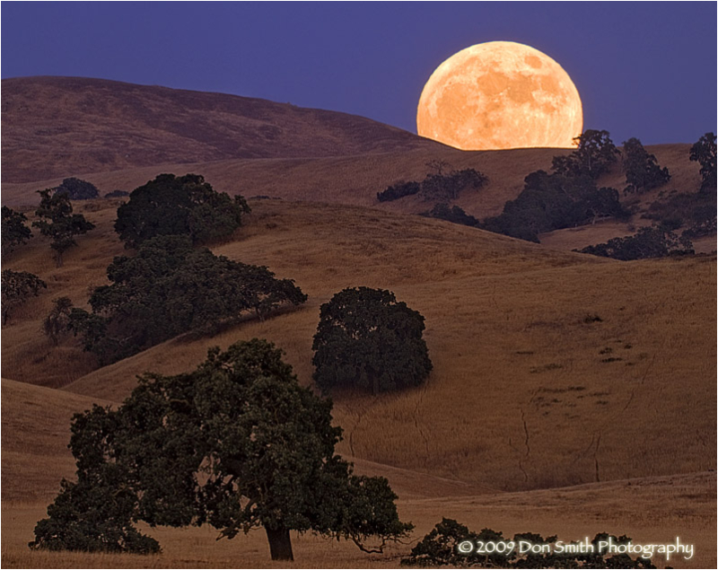 A full moon rises over California oak-lined hills.