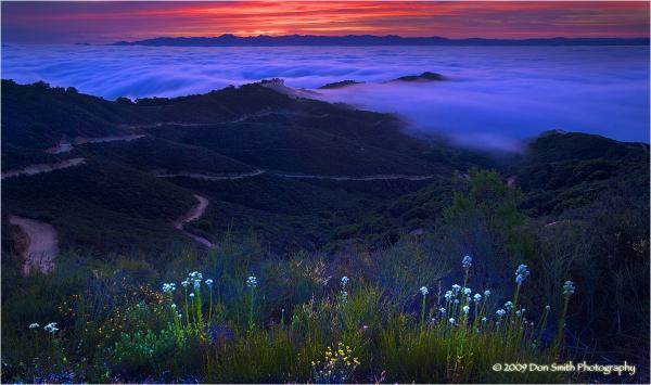 Morning fog and dawn light over Santa Clara Valley