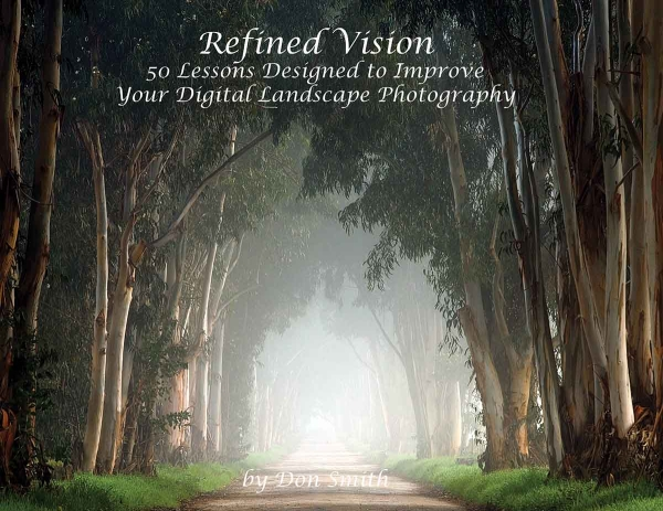 Refined Vision, digital book cover.