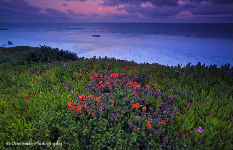 Dawn moonset along headlands of Garrapata Beach.