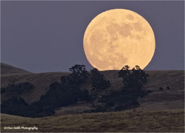 A full moon rises over Diablo Range in California.