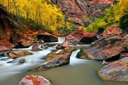 The Virgin River, Zion Canyon