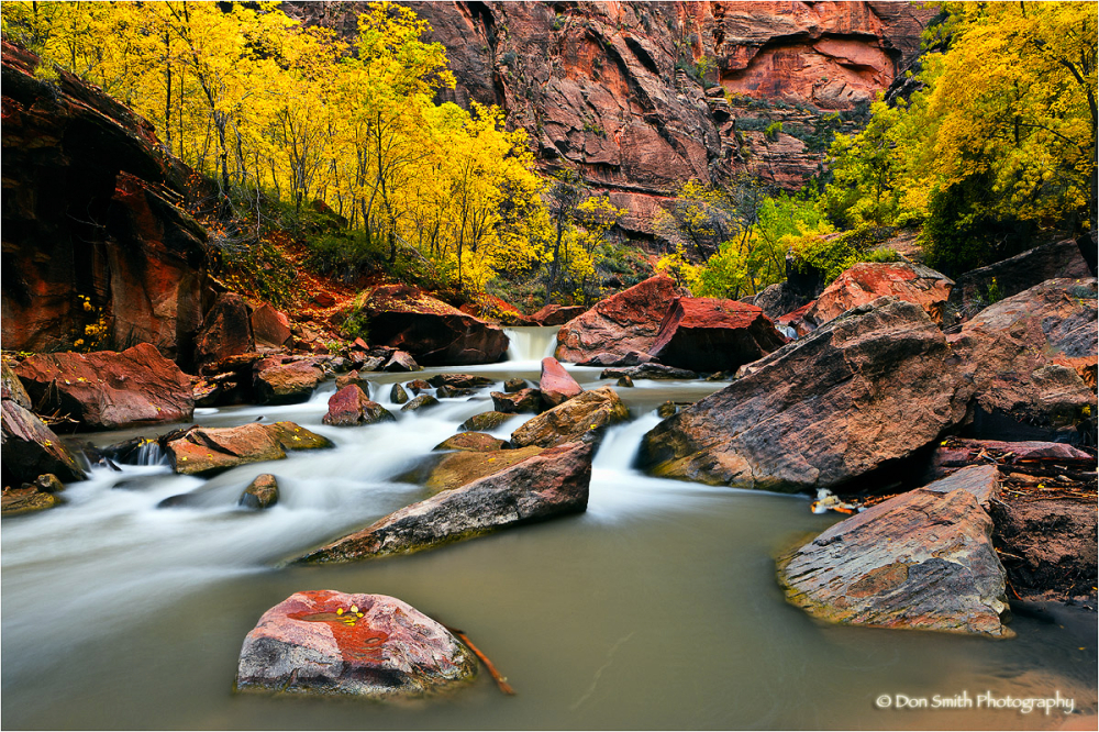 The Virgin River  and fall color in Zion Canyon.