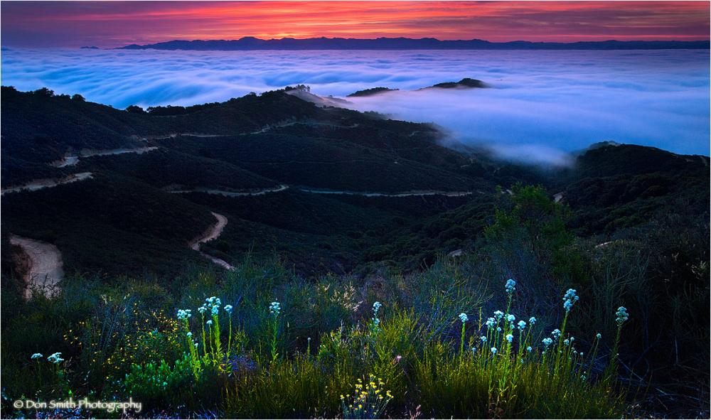 Dawn light and fog over San Benito County, Ca.