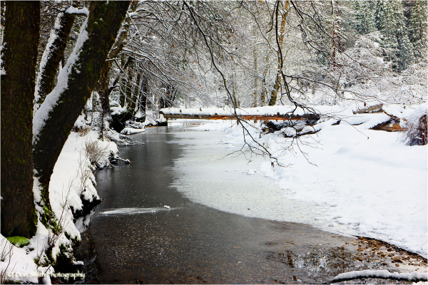 Frozen Merced River, Yosemite National Park