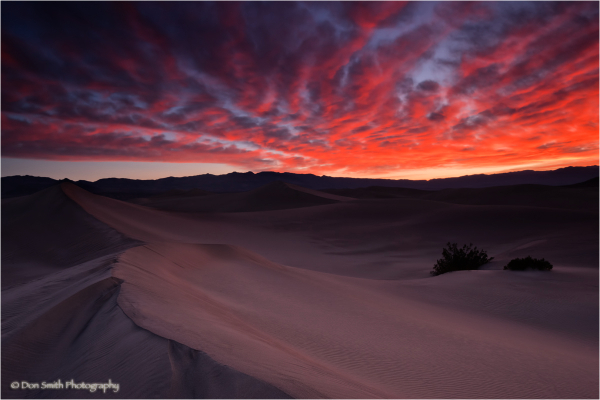 Winter sunrise over Mesquite Dunes, Death Valley.