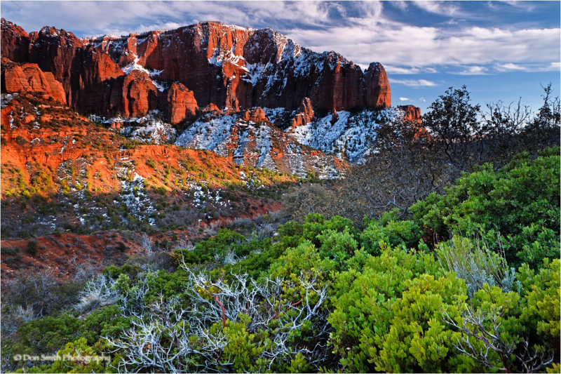 Kolob-Canyon, Zion National Park, Utah.