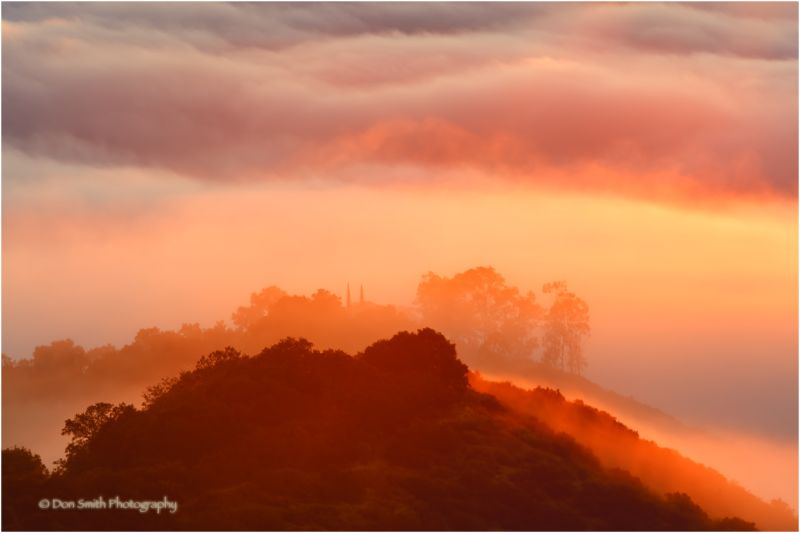 Above the fog for sunrise, Santa Clara Valley, Ca.