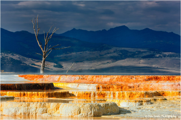 Minerva Terrace, Mammoth Hot Springs, Yellowstone.
