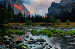 Bittersweet Memories, Yosemite NP