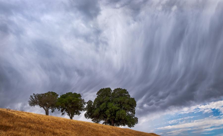 Fujifilm XT-1, Fuji 10-24mm, thunderstorm Sky, oak