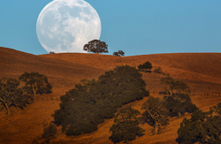 Full Super Moonrise, San Benito County, California