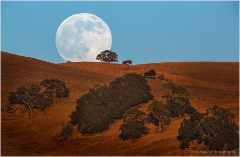 super moon, full super moon, moonrise, large moon