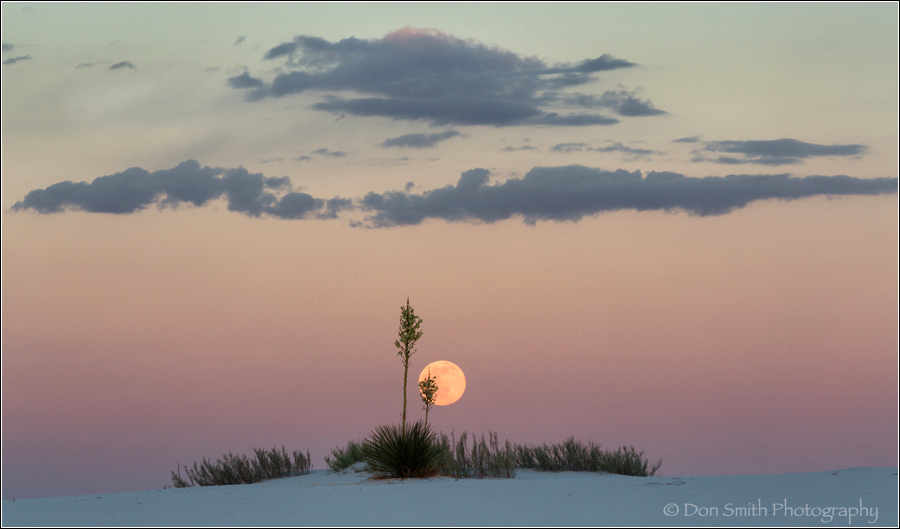 White Sands NM Photo Workshop, don smith photograp