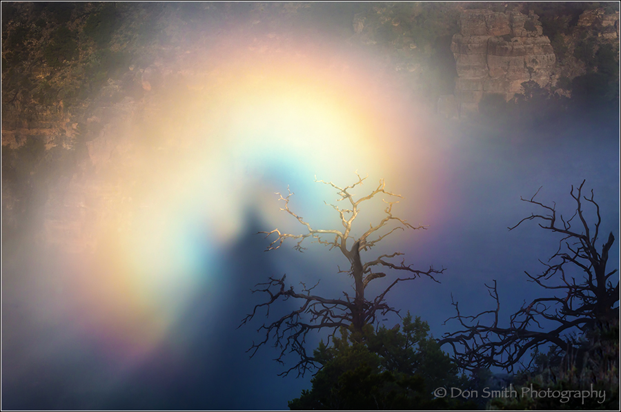 Brocken Spectre, Grand Canyon National Park