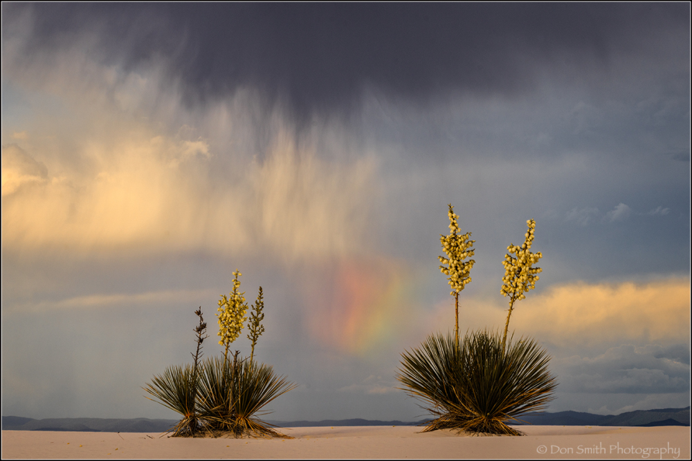 Virga, Rainbow and Yuccas, White Sands NM