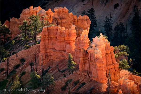 Glowing Hoodoos, Bryce Canyon National Park