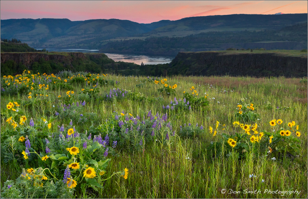 Columbia River Gorge Photo Workshop