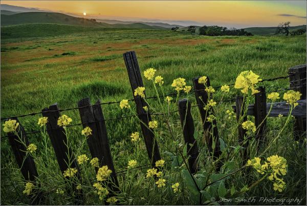 Spring Evening, Santa Clara Valley