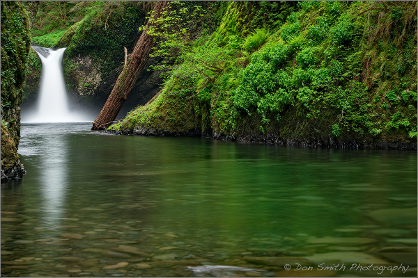 Punchbowl Falls, Columbia River Gorge