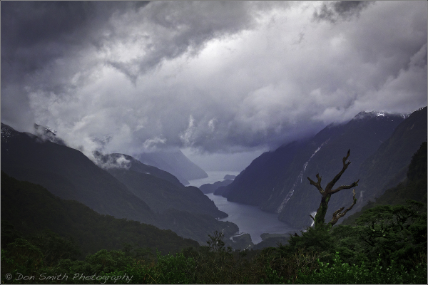 Deep Cove Overlook, Doubtful Sound, New Zealand