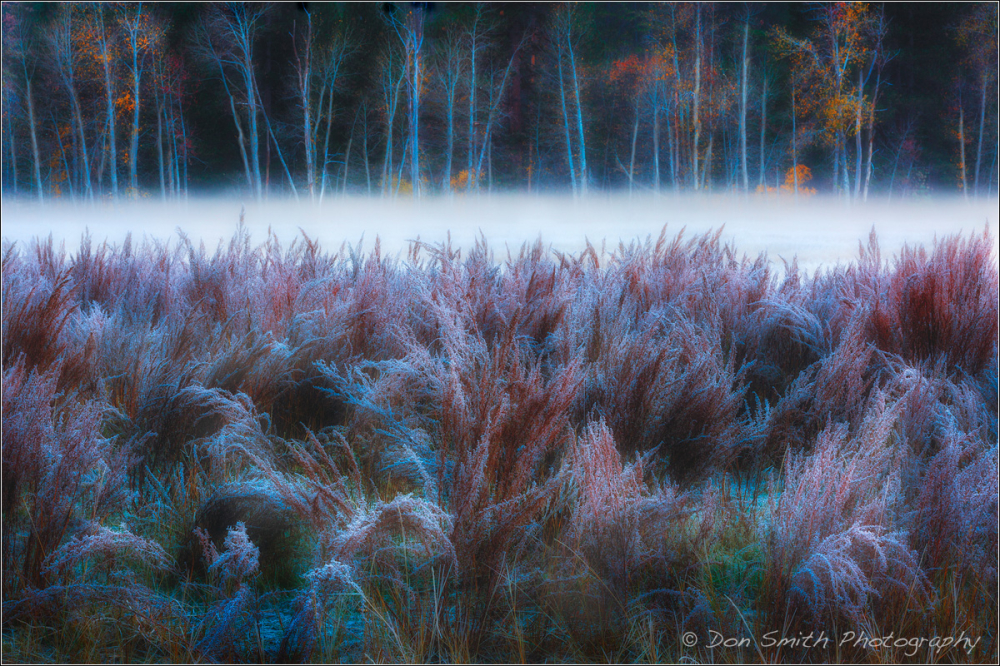 Fall Morning, Yosemite National Park