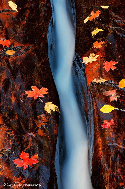 The Crack, Zion National Park