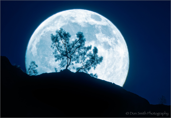 Tips for Photographing This Weekend's Supemoon