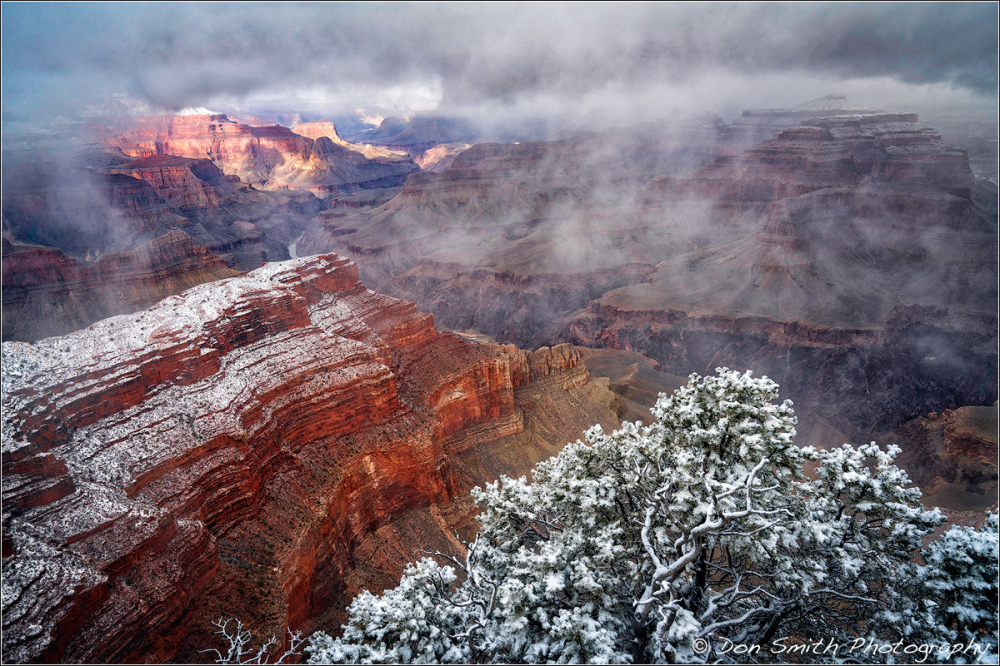 Snow Day, Grand Canyon National Park