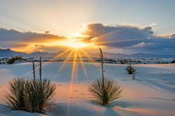 Golden Rays Over Yuccas, White Sands NM