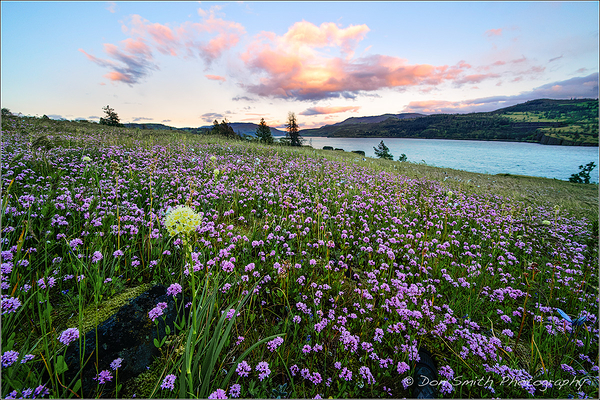 Sony's New 12-24mm in Columbia River Gorge, Oregon
