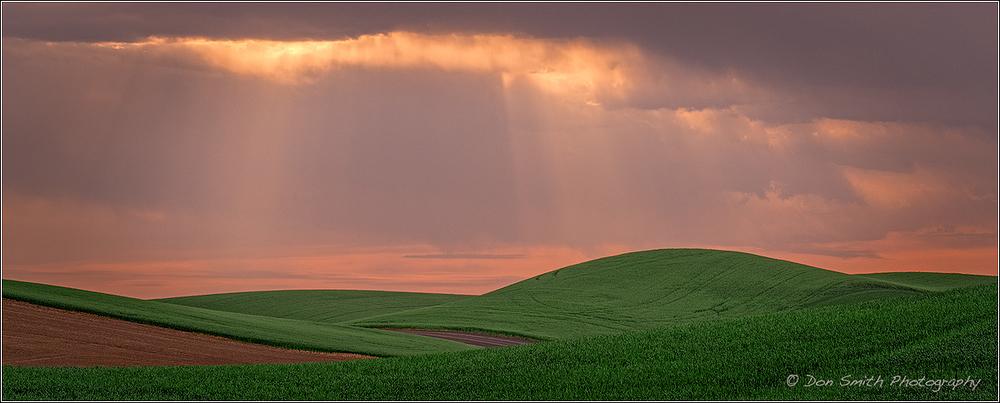 Sunrise Beams and Wheat Fields, Palouse