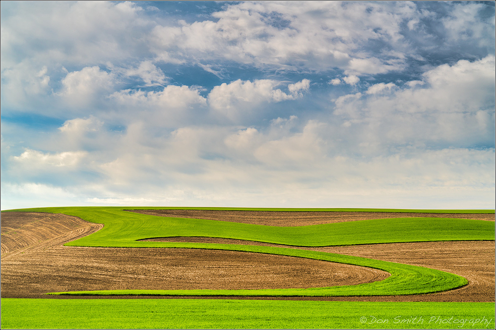Field Art, The Palouse