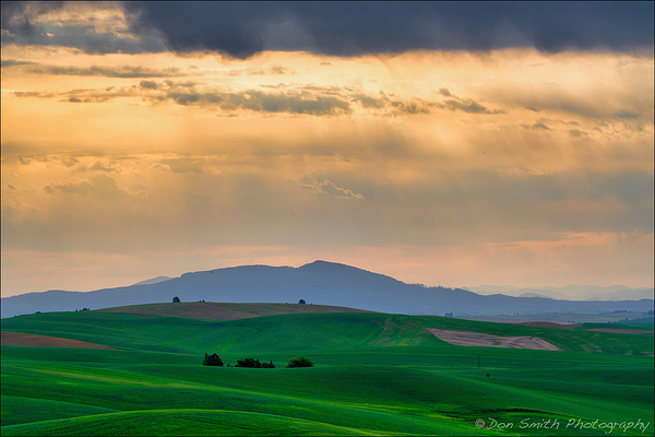 Heaven's Beams Over Palouse