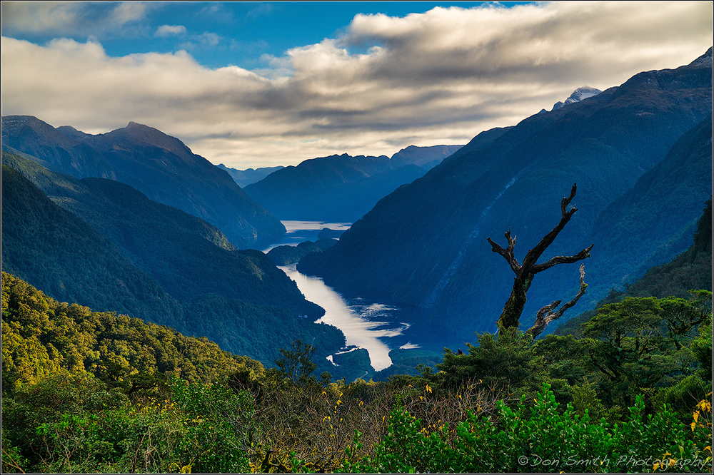 Doubtful Sound, Fiordland NP, New Zealad
