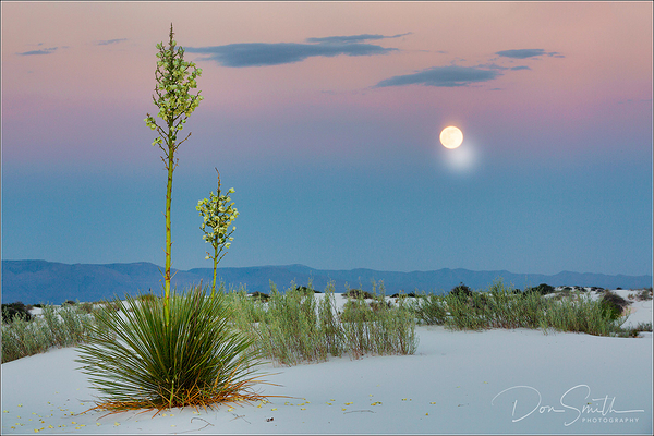 White Sands Workshop, New Mexico