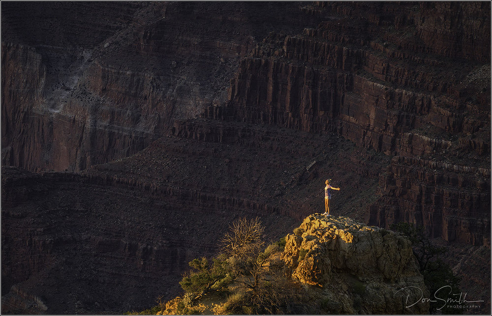 Basking in the Light at Grand Canyon